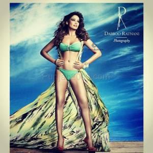 Dabboo Ranani 2015 Calendar