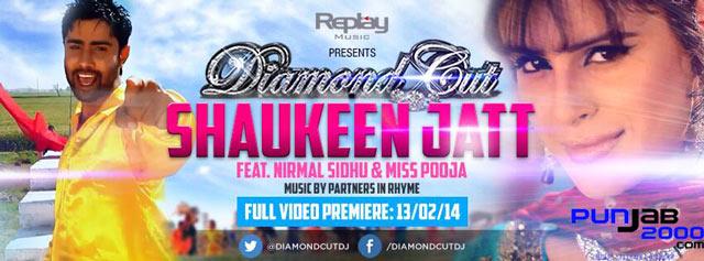 Shaukeen Jatt by Partners In Rhyme Ft Nirmal Sidhu & Miss Pooja from the album Diamond Cut